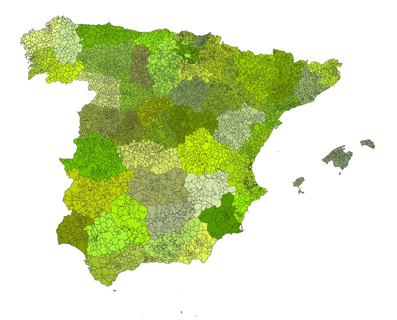Spain map with municipalities